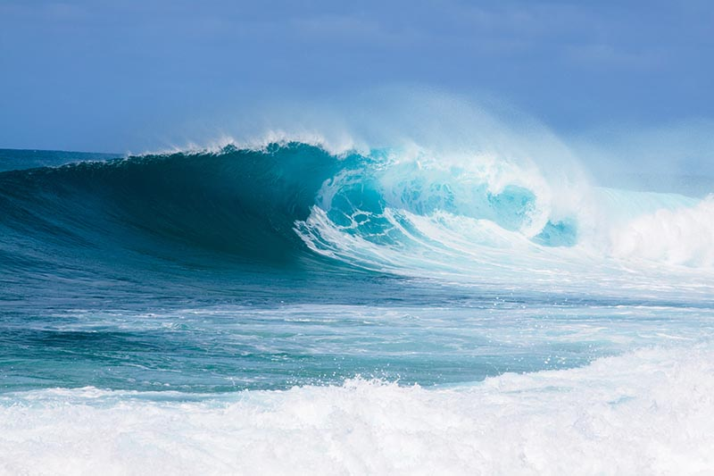 Winter swells create high surf conditions on the North Shore of Oahu. Joshua Rainey/Shutterstock.com